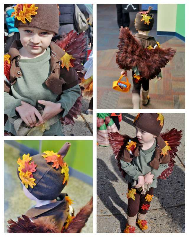 fairy costume for boys